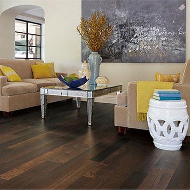 Family Room/Dens   Bella Cera Hardwood Floors