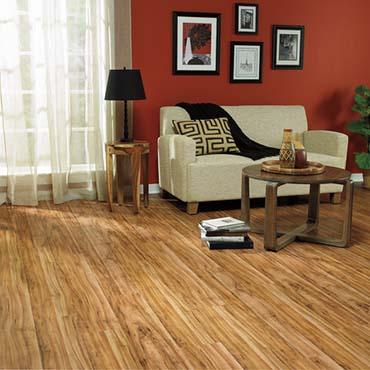 Family Room/Dens | Columbia Hardwood Flooring