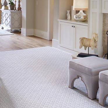 Living Rooms | Karastan Carpet