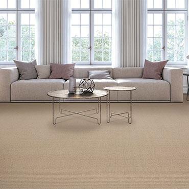 Living Rooms   Karastan Carpet