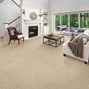 Family Room/Dens | Karastan Carpet