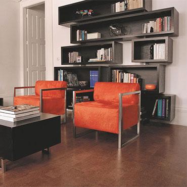 Living Rooms | APC Cork Flooring