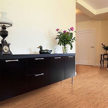 Living Rooms | APC Cork Flooring