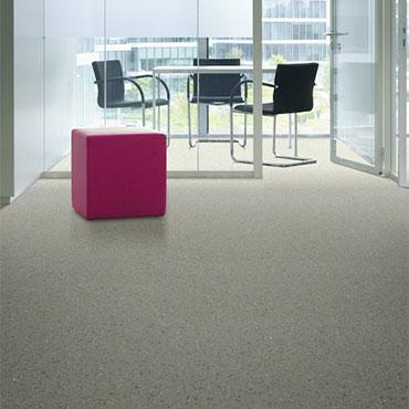 Beauflor® Vinyl Flooring | Office/Tenant - 5906