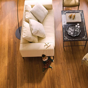 Teragren Bamboo Flooring | Living Rooms