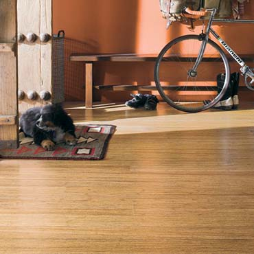 Teragren Bamboo Flooring - North Myrtle Beach SC