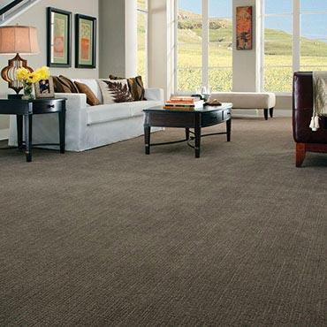 Anderson Tuftex Carpet |  - 3633