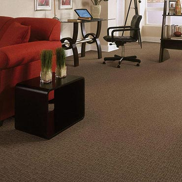 Anderson Tuftex Carpet By Shaw Industries Group Inc