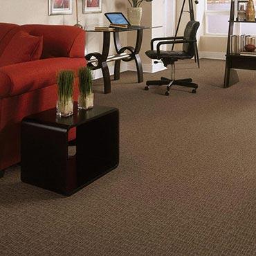 Anderson Tuftex Carpet |  - 3640