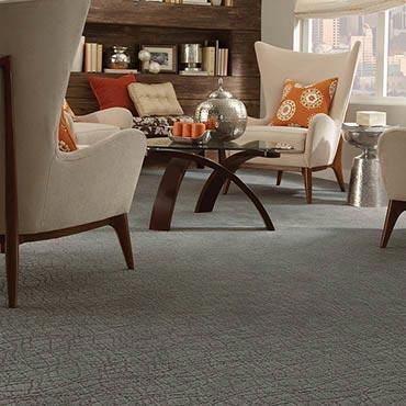 Anderson Tuftex Carpet |  - 3672