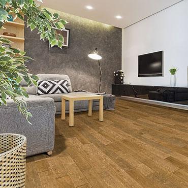 Reward Hardwood Flooring   Living Rooms