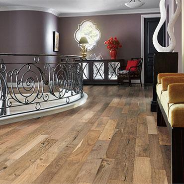 Bella Cera Hardwood Floors   Foyers/Entry - 6393