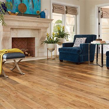 Bella Cera Hardwood Floors   Living Rooms - 6396