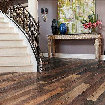 Bella Cera Hardwood Floors   Foyers/Entry - 6400