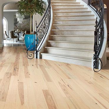 Bella Cera Hardwood Floors   Foyers/Entry - 6403