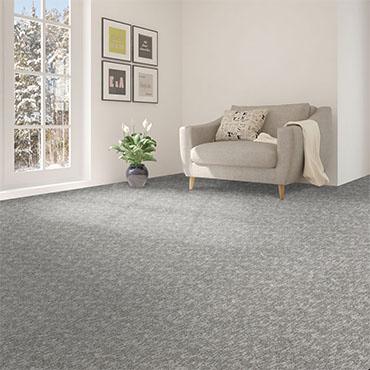 Southwind Carpets   Family Room/Dens