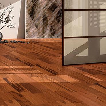 ARK Floors  | Living Rooms