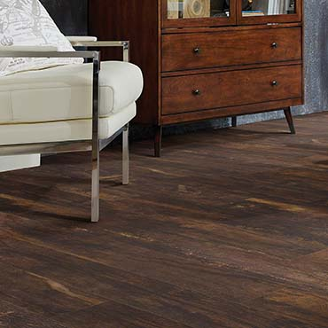 Shaw Resilient Flooring | Family Room/Dens - 2911