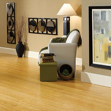 Natural BAMBOO® Flooring | Living Rooms - 3366