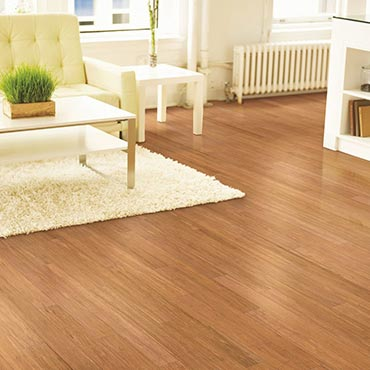 Natural BAMBOO® Flooring | Living Rooms - 3387