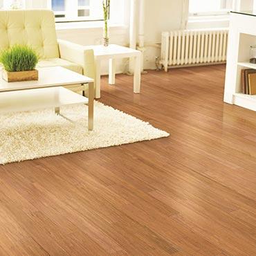 Natural BAMBOO® Flooring | Living Rooms - 3387