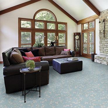 Couristan Carpet   Family Room/Dens - 6529