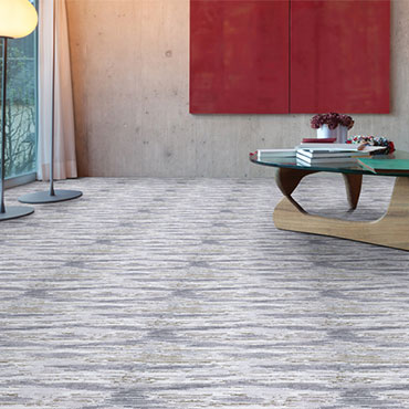 Couristan Carpet   Living Rooms - 6535