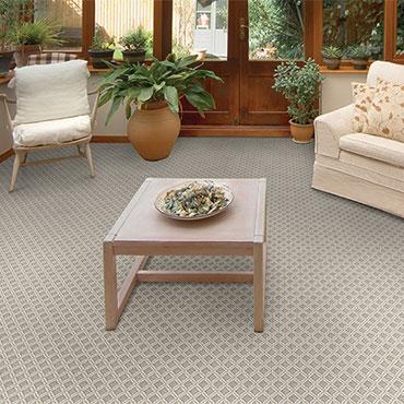 Couristan Carpet   Sunrooms - 6541