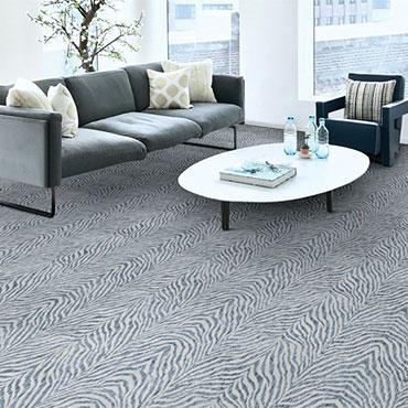 Couristan Carpet   Living Rooms - 6544