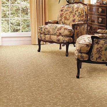 Couristan Carpet   Living Rooms - 6551