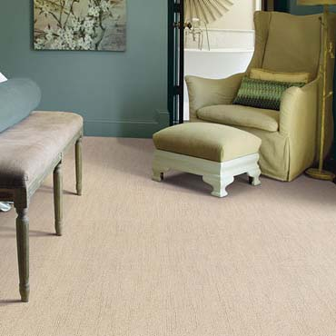 Caress Carpet by Shaw