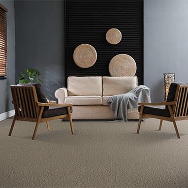 Dream Weaver Carpet  | Family Room/Dens