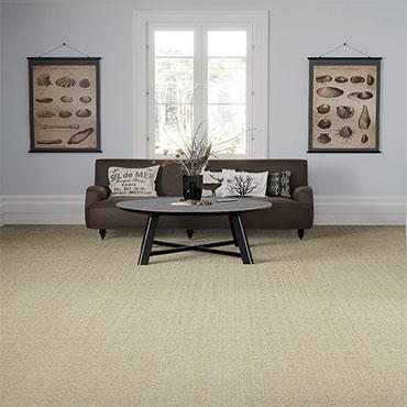 Phenix Carpet  | Family Room/Dens - 5471