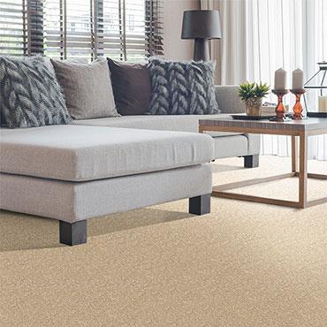 Phenix Carpet  | Family Room/Dens