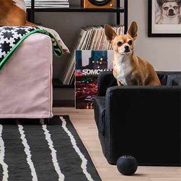 Ikea Furnishing | Living Rooms - 5172