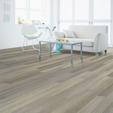 Southwind LVT/LVP | Living Rooms - 5807