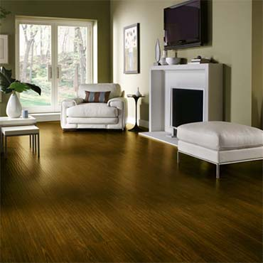 Armstrong Laminate Flooring | Living Rooms