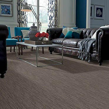 Anso® Nylon Carpet