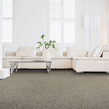 Karastan Carpet   Family Room/Dens - 6140