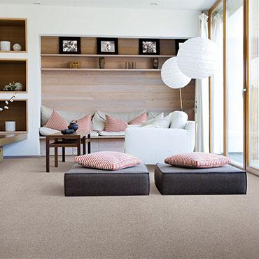 Karastan Carpet   Family Room/Dens - 6143