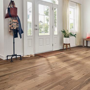 Hartco® Wood Flooring | Foyers/Entry - 6653