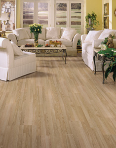 Attractive Living Rooms Designs Courtesy Of Shaw Laminate Flooring   All Rights  Reserved.
