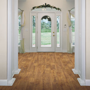 Foyers/Entry Designs Courtesy Of Shaw Laminate Flooring   All Rights  Reserved.