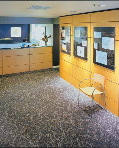 Office/Tenant Flooring Ideas And Choices