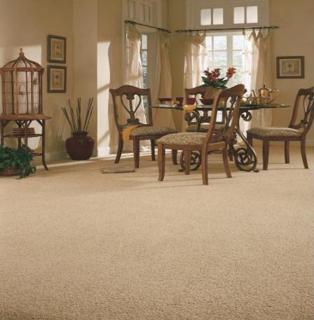 dining room areas flooring idea unforgetable charm by anderson tuftex carpet - Carpeted Dining Room