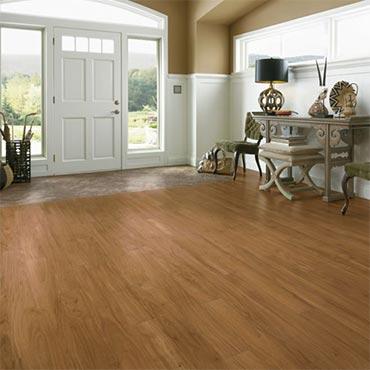 Armstrong Luxury Vinyl Plank Flooring