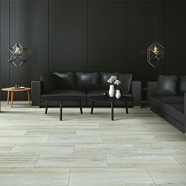 Shaw Luxury Vinyl Tile