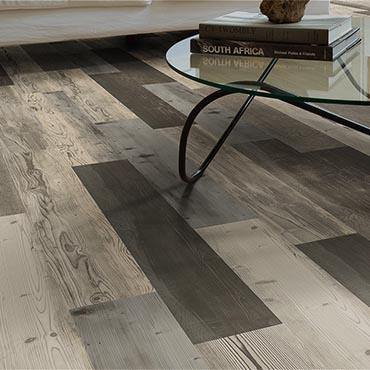Moduleo Luxury Vinyl Flooring