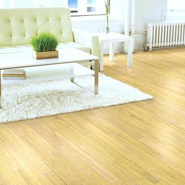 Natural BAMBOO� Flooring | Living Rooms