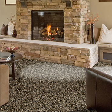 Phenix Carpet  | Family Room/Dens